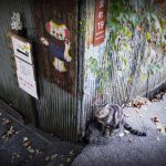 尾道・広島旅行 撮影旅行