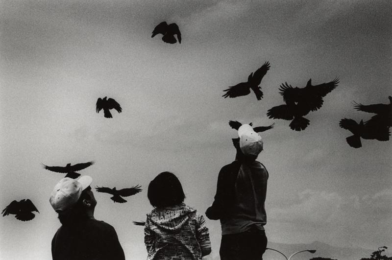 写真集団·Eye's+ 写真展「IMA'20」